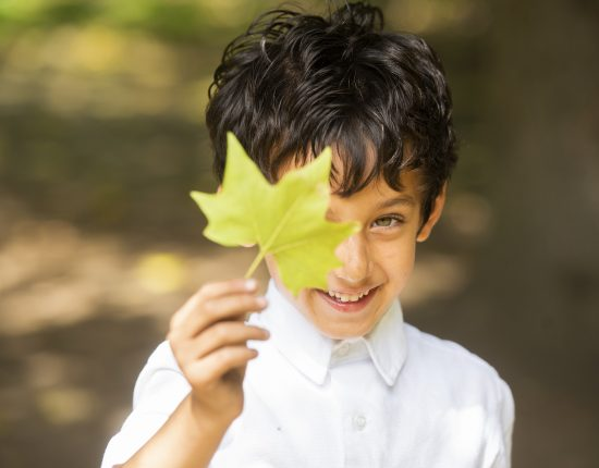 young boy holding up a leaf